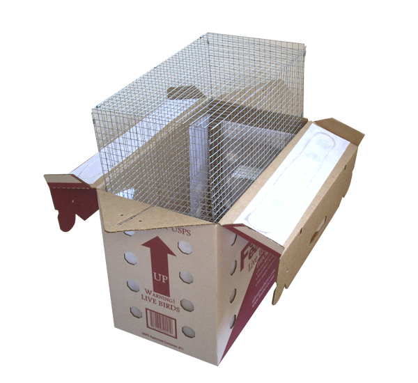 A Lot Of 3 Featherex Parrot Shipping Box 3 Wire Mesh Cage